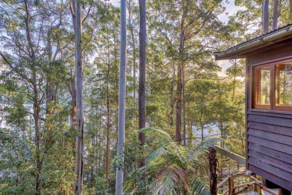 The Nest - Secrets on the Lake Maleny Accommodation